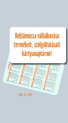 60x95-es zsebnaptár