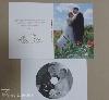 dvd borító + dvd lemez, esküvő, borító, dvd, lemez